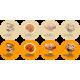 BIO REISHI  tab., 60 tablečių